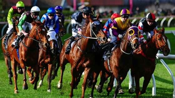 Las 7 mayores rivalidades en carreras de caballos durante los últimos años