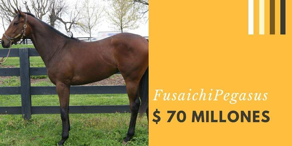 Fusaichi Pegasus 70 millones