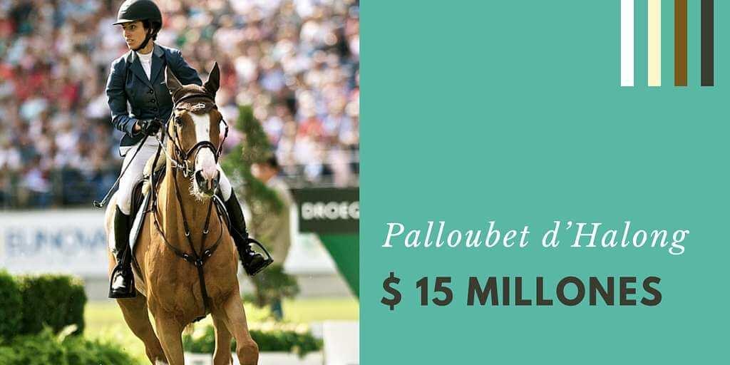 Palloubet d'Halong 15 millones