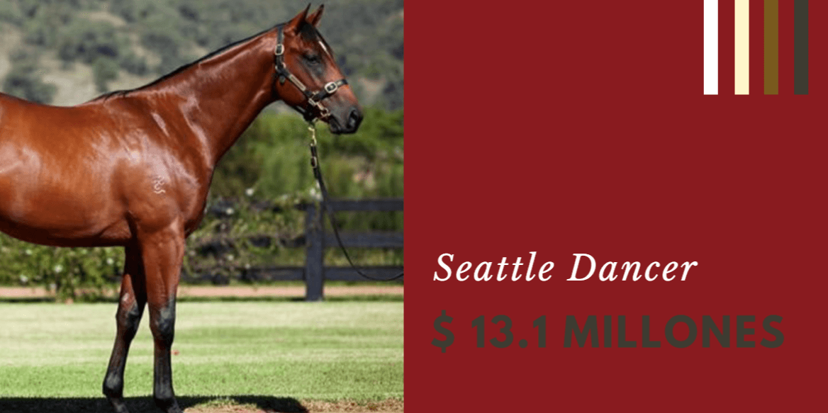 Seattle Dancer 13.1 millones