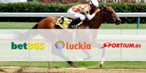 Bet365, Sportium o Luckia: ¿Cuál es el mejor sitio para apostar en las carreras de caballos?Bet365, Sportium o Luckia: ¿Cuál es el mejor sitio para apostar en las carreras de caballos?