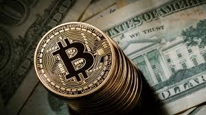 bodog bitcoin